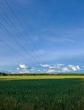 Drähte über einem Feld Lizenzfreies Stockfoto