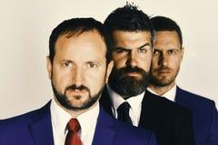 Dräkter och band för affärsmankläder smarta Män med skägg och misstänksamma framsidor står för företagsledarskap royaltyfri bild