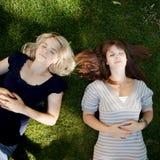 dröm- grässommar arkivfoton