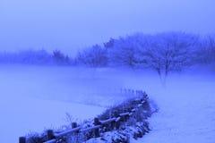Dröm i vinter Royaltyfri Fotografi