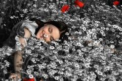 dröm- sommar Arkivfoto
