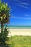 Dröm- strand Royaltyfria Bilder