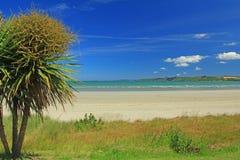 Dröm- strand Arkivbilder