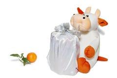 dröm- tangerine Royaltyfri Fotografi