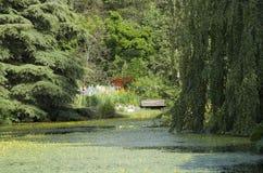 Dröm- trädgård royaltyfria bilder