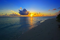 Drömlik korallstrand Royaltyfri Fotografi