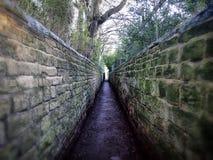 Drömlik sikt av en lång smal passage som omges av stenväggar royaltyfria foton