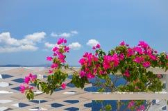 Drömlik tur till ön av Santorini royaltyfria foton