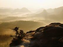 Drömlikt dimmigt landskap Det majestätiska berget klippte belysningmisten som den djupa dalen är full av färgrik dimma och stenig Royaltyfri Foto