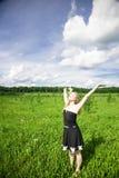 drömm sommar Fotografering för Bildbyråer