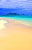 drömm tropiskt Arkivbild