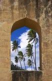 drömm tropiskt royaltyfri bild