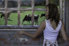 Drömma av lantgårdlivet Arkivfoto