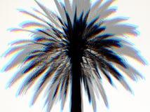 Drömma för palmträd Royaltyfria Foton