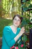 drömma trädgård royaltyfri fotografi