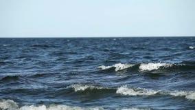 Drömmar av havet stock video