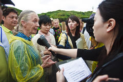 Dr. Jane Goodall in 2010 television interview. Dr. Jane Goodall in 2010, Taiwan, ROC television interview, talked about the root and tree planting activities Royalty Free Stock Photos