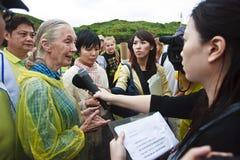 Dr. Jane Goodall Fernsehinterview 2010 Lizenzfreie Stockfotos