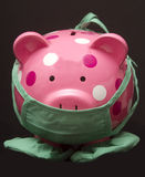 Dr. Piggy Bank Royalty Free Stock Image