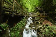 Dr. Vogelgesang-Klamm, Oberosterreich, Austria royalty free stock photos