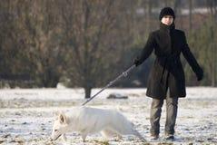 dra för hund Royaltyfri Bild