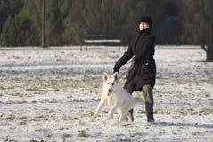 dra för hund Royaltyfria Foton