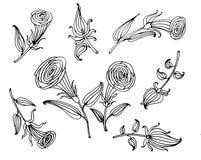 dra illustrationen för klotter för samling för blommabeståndsdeluppsättning royaltyfri illustrationer