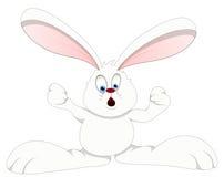 Kanin - illustration för tecknad filmteckenvektor Arkivbilder