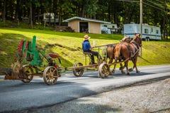 Dra plogen på vägen med hästar Fotografering för Bildbyråer
