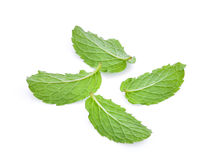 Dra tillbaka av bladet för den nya mintkaramellen som isoleras på vit Arkivbild