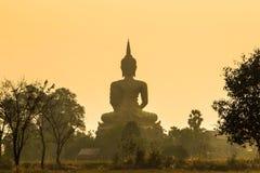 Dra tillbaka av den stora guld- buddha statyn på soluppgång med dimma Royaltyfri Bild