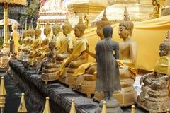 Dra tillbaka av en Buddhastaty för mörk brunt med mycket golen buddha statistik Royaltyfri Foto