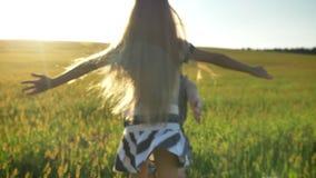 Dra tillbaka av liten flicka med lång spring för blont hår på vetefält och att krama hennes moder, härlig solnedgång i bakgrund arkivfilmer