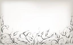 Dra vid handen, borstenaturen och växter, svartvit bakgrund royaltyfri illustrationer