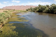 Draa river landscape Royalty Free Stock Images