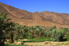 Draa Valley Stock Images