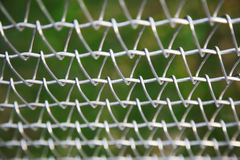 Draad Mesh Fence Royalty-vrije Stock Afbeelding