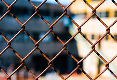 Draad Mesh Fence Stock Foto