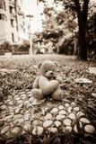 Draag Doll Stock Fotografie
