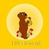 Draag en honing Royalty-vrije Stock Afbeelding