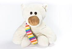 Draag met gekleurde sjaal Stock Afbeelding