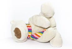 Draag met gekleurde sjaal Royalty-vrije Stock Afbeeldingen