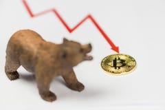 Draag met Gouden Bitcoin Cryptocurrency en rode grafiek Het Financiële Concept van Baissemarktwall street royalty-vrije stock fotografie