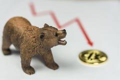 Draag met Gouden Bitcoin Cryptocurrency en rode grafiek Het Financiële Concept van Baissemarktwall street stock afbeelding