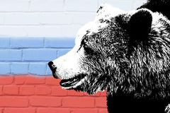 Draag op de achtergrond van de Russische vlag Bruin draag stock afbeeldingen