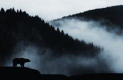 Draag op klip in de berg met mist stock afbeelding