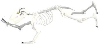 Draag skelet alleen loopt royalty-vrije illustratie