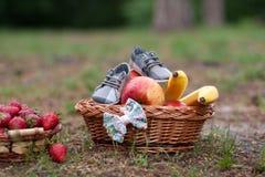 Draagmand met vruchten en schoenen op groen gras Royalty-vrije Stock Foto