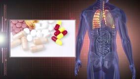 Draaiend menselijk cijfer die organen met montering van medische klemmen tonen stock video
