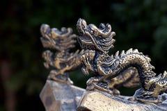 Draak in de tempel stock afbeeldingen